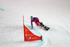 Этап Кубка мира по сноуборду в дисциплине параллельный слалом 30.01.2016, Москва, Крылатское